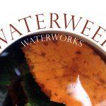 Waterweek 2020